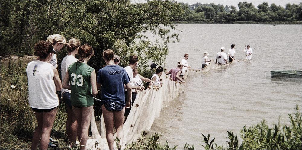 Ungdomar i en linje som drar ett fisknät.